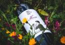"""CS – Dalla """"Pietra di Scarto"""" nasce """"Franco"""", il vino dedicato a Francesco Marcone"""
