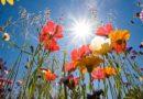 Meteo 26 Settembre: sole e caldo estivi, la sera di Domenica ci sarà un peggioramento